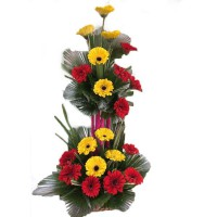 YELLO N RED SHINE BASKET